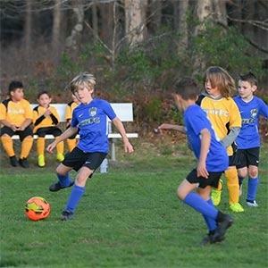 Hamilton Elite rec soccer program